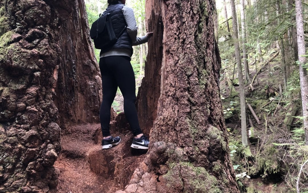 Rowing and Hiking in BC – by Kayla